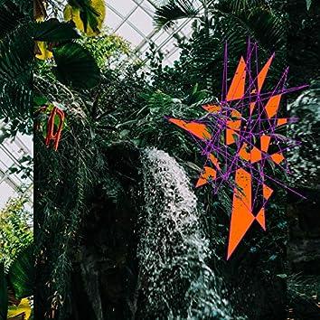 Knob Bloom