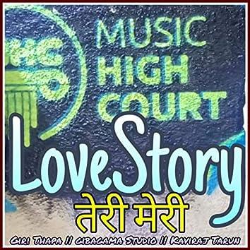 Love Story Teri Meri