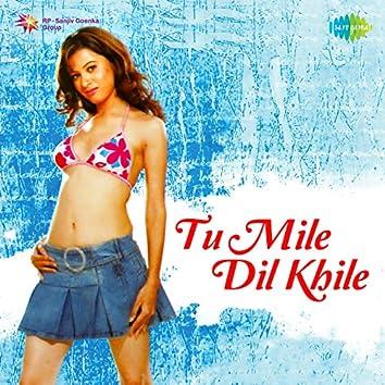Tu Mile Dil Khile - Single
