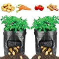 HYRIXDIRECT 2 Pack 10 Gallon Black Grow Bags Portable Potato Growing Bag Planter Bags Planting Pouch with Handles Access Flap for Carrot Onion Vegetables from HYRIXDIRECT