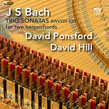 J.S. Bach: Six Trio Sonatas Arranged for Two Harpsichords