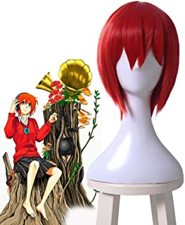 FidgetFidget The Ancient Magus' Bride Chise Hatori Cosplay Wig Red Short Straight Bob Wigs