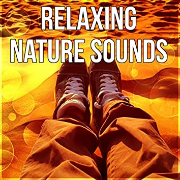 Relaxing Nature Sounds - Therapy Music for Inner Peace, Calming Music for Yoga and Meditation