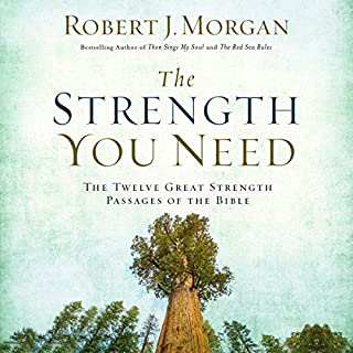 The Strength You Need cover art