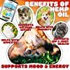(2-Pack) Natural Hemp Oil for Dogs and Cats - Dog Calming Aid for Stress and Anxiety - Hip and Joint Health, Mobility, Immunity - Pet Hemp Oil Rich in Omega 3, 6, 9 #3