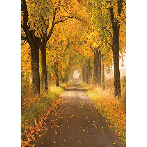 Autumn Forest Photography Backdrops Wooden Bridge Photo Background 3D Vinyl Cloth Printer for Studio Photo A6 7x5ft/2.1x1.5m