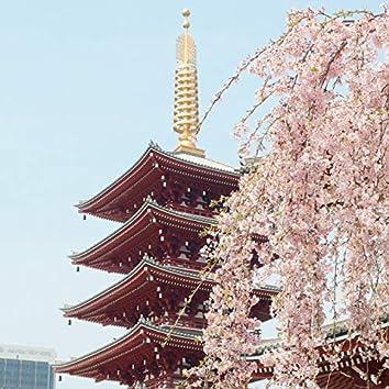 Sakura Skies