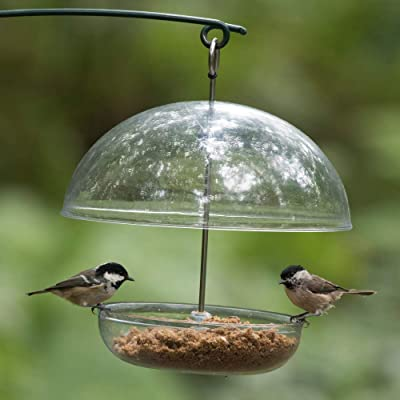Eva Solo Mini comederos para pájaros, 2 Piezas: Amazon.es: Jardín