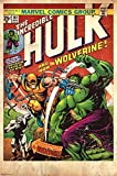 The Hulk & Wolverine Poster Drucken (60,96 x 91,44 cm)