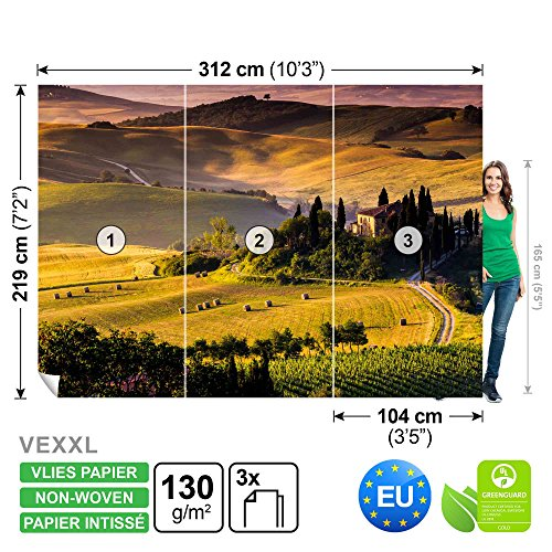 FORWALL DekoShop Vlies Fototapete Tapete Vliestapete Toskana AD169VEXXL (312cm x 219cm) Photo Wallpaper Mural