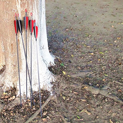 MS Jumper Archery Carbon Arrows