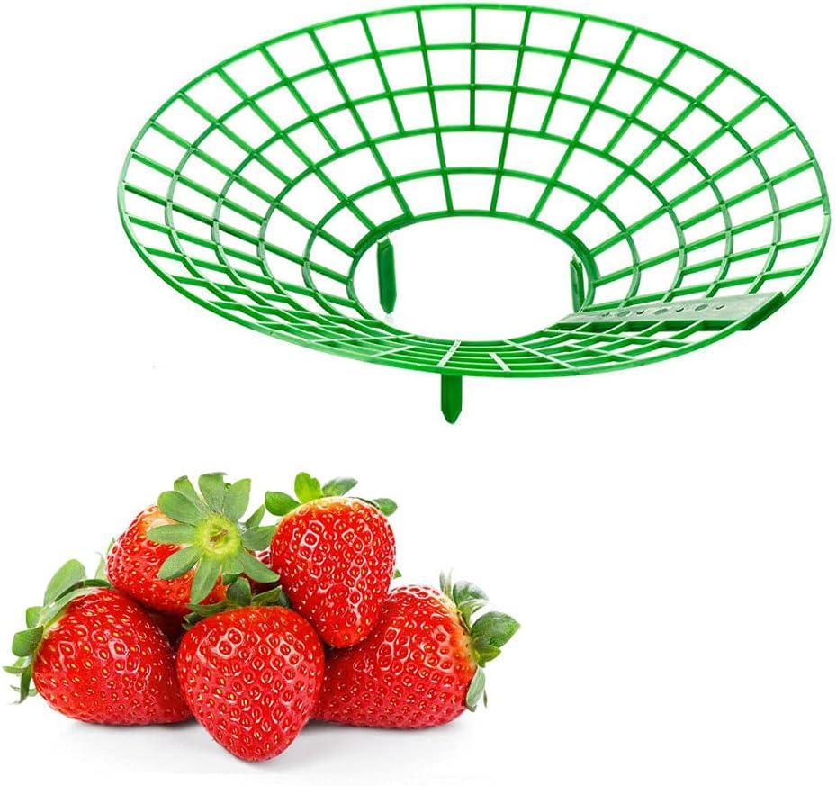 ZSDN 10Pcs Strawberry Support Stand Fruit Frame P New color Regular dealer Holder Plastic