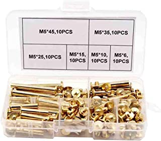60Pcs Copper Plating Flat Head Chicago Male-Female Screws Male and Female Furniture Connector Bolt Assortment Kit for Photo Albums Binding,Leather Bookbinding Crafts Leather Repair-Gold