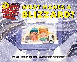 Best blizzard store books Reviews