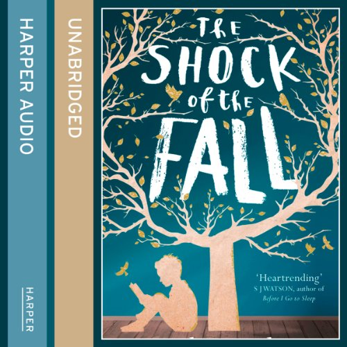 The Shock of the Fall Titelbild