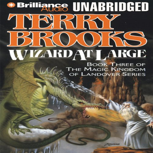Wizard at Large audiobook cover art