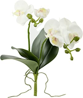 Rinlong Artificial Moth Orchid White Silk Phalaenopsis Orchid Flower Stem with Leaves Buds Root for DIY Bonsai Floral Arrangement Indoor Decor