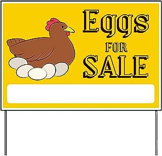 eeg for sale