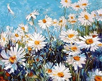 Best field of daisies Reviews