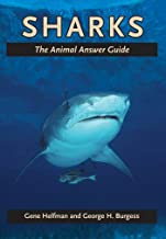 Sharks (The Animal Answer Guides: Q&A for the Curious Naturalist)