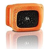 Motorola Scout Traks – GPS Tracker und Aktivitätstracker für Hunde und Katzen – Inkl. 1 Jahr Abo, schwarz - 7