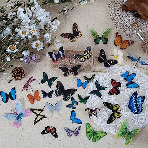 DESEACO 240PCS Butterflies Scrapbook Stickers and Dragonfly Vintage Stickers Packs Artsy Designed product image