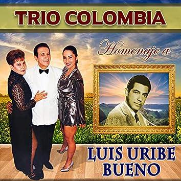 Homenaje a Luis Uribe Bueno: Campanitas / Reproche / Enjalmas y Muleras / Porque Te Alejas / El Marco de Tu Ventana