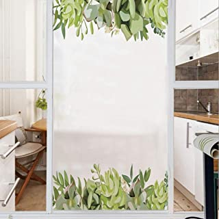 Decorative Window Film,No Glue Frosted Privacy Film,Stained Glass Door Film,Cactus Flower Garden Green Fern Seasonal Branch and Leaves Frame Borders Decorative,for Home & Office,23.6In. by 35.4In Gree