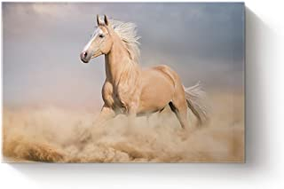 Wall Print Art- Palomino Running Horse Wild Western Animal Canvas Prints Gallery Wrapped Modern Pictures Painting for Home...