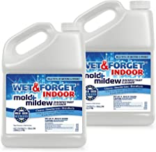 Wet and Forget 00036 1 Gallon Indoor Mold and Mildew Cleaner/Deodorizer, 2-Pack