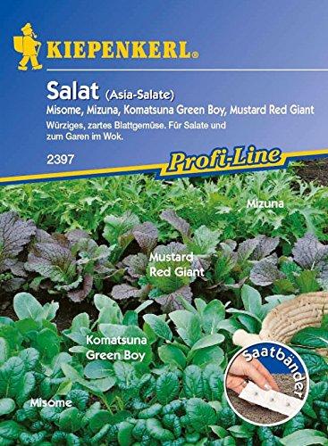 Kiepenkerl, Asia Salate Saatband