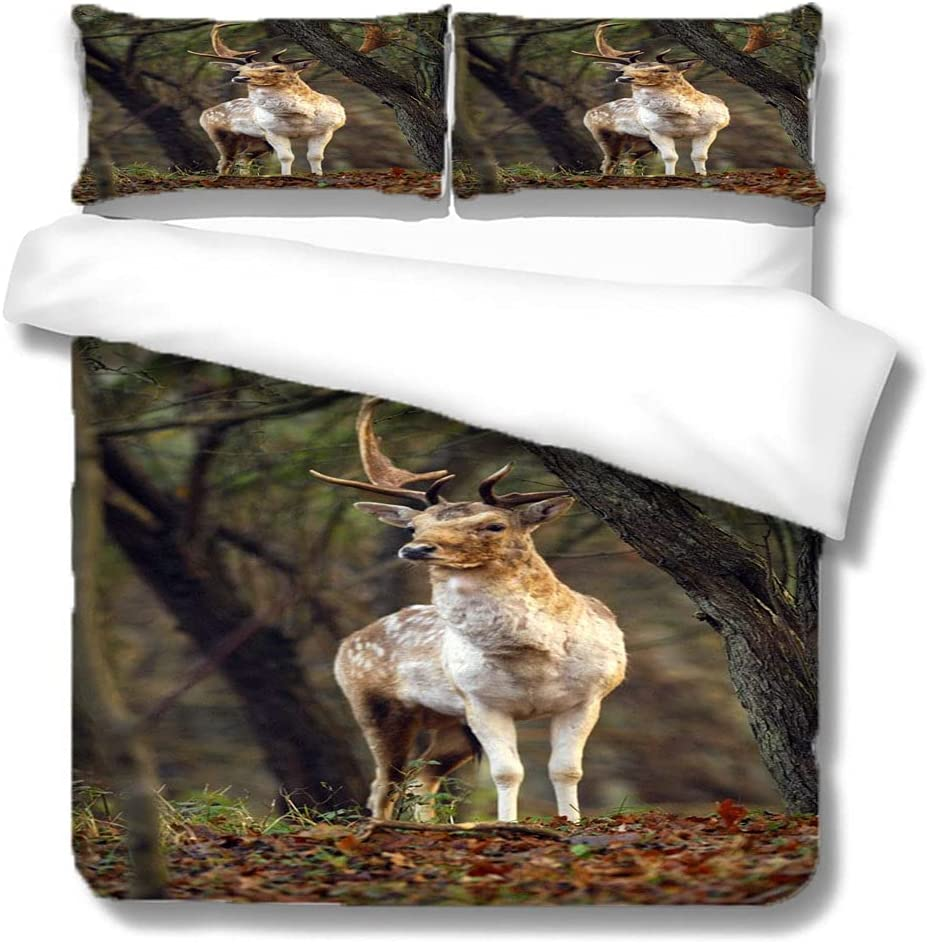 Safety and trust DERFG-Double Duvet Cover Yellow Sky Grassland Selling and selling Anima Trees Forest