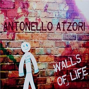 Walls of Life