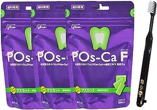 【日本製歯ブラシ1本付き】ポスカ ・ エフ POs-Ca F 100g × 3袋(マスカット ) 歯科専用ガム