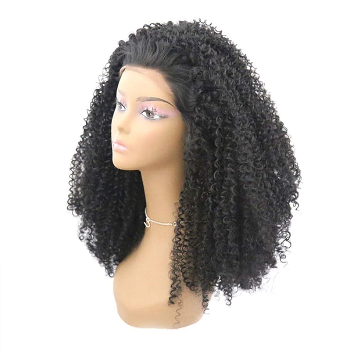 資産毎回味Summerys 合成かつらレースフロントかつら赤ん坊の毛髪自然な生え際耐熱ファイバーレースかつらで長い緩い巻き毛かつら女性のための自然な黒のかつら (Size : 24inch)