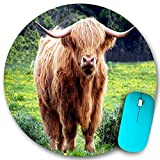 KGSPK Gaming Mouse Pad,Animal Photography Cattle Bull Cow,7.9'x7.9' inch Non Slip Rubber Round Mouse mat Desk Decor for Office Home Computer PC latop