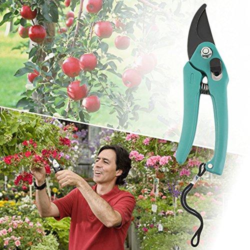 Sécateur de jardinage avec ressort de verrouillage