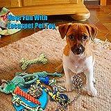 Zoom IMG-2 focuspet cane corda giocattoli puppy