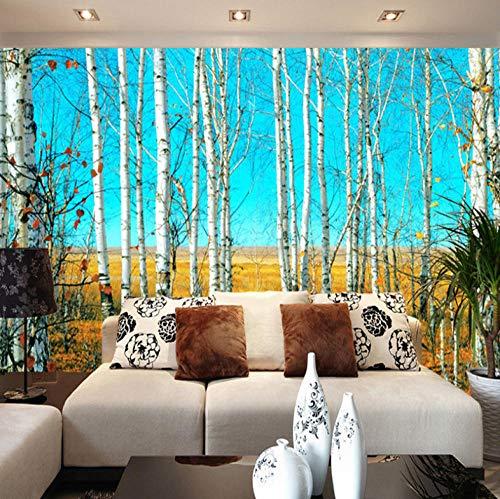 Aangepaste grootte HD Berkenbos 3D Natuur Landschap Fotobehang Grote Muurschildering Achtergrond Woonkamer muurschildering Wallpaper-400X280cm