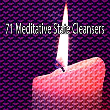 71 Meditative State Cleansers