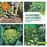Un potager très chou(x): Cabus, kales, brocolis, pe-tsaï… (Facile & bio)...