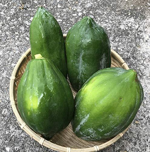 沖縄県産 青パパイヤ5kg