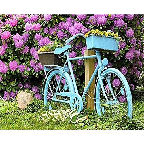 PLYBGC Pinte por Number Kit, Bicicleta Azul DIY Pintura por números con...
