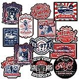 Chileeany Big size-13Piezas–Pegatinas Maleta, Pegatinas (Tela, Retro Vintage Stickers para...