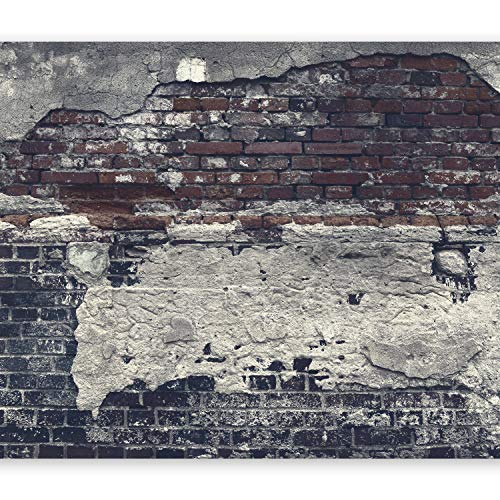 murando - XXL Fototapete 500x280 cm - Größe Format - Vlies Tapete - Moderne Wanddeko - Design Tapete - Wandtapete - Wand Dekoration - Ziegel Ziegelstein f-A-0503-x-c