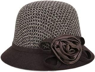 ZiWen Lu Woolen hat, hat, hat, Winter, Cold (Color : Brown, Size : M56-58cm)