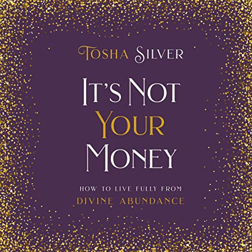 It's Not Your Money audiobook cover art