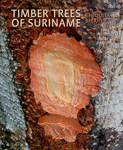 Timber Trees of Suriname: Identification Guide: an identification guide
