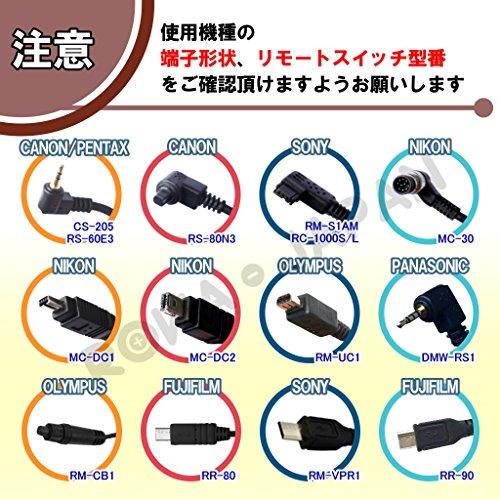 ロワジャパン『ロワRS001』