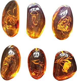 Vosarea 1Piece Amber Fossil with Insects Samples Stones Crystal Specimens Home Decorations Collection Oval Pendant (Random Pattern)
